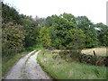 SK3167 : Bridleway leading to Harewood Road by Alan Heardman