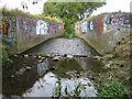 TQ4990 : River Rom in Collier Row by Nigel Cox