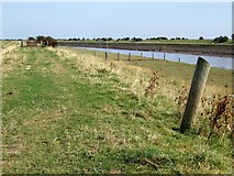 TF3839 : Footpath at Cut End, Boston by Dave Hitchborne
