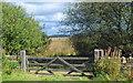 SK2873 : Gateway onto Leash Fen by Roger Temple