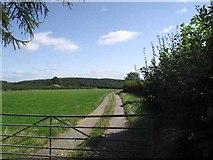 SJ2429 : Farm access track  near Nant-y-gollen by Philip Ingram