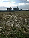 TA0231 : Haggs Farm fields by Paul Harrop