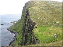NG4198 : Mullach Buidhe on Garbh Eilean, the Shiants by Chris Wimbush