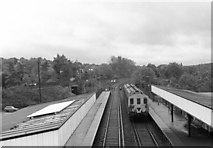 TQ3060 : Reedham station, Surrey by Dr Neil Clifton