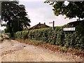 TL7396 : Brook Lane, Brookville by Lisa Wild