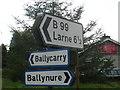J3794 : Ballynure Signage by Raymond Okonski