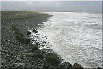 NZ5428 : Coast North of the Breakwater by Mick Garratt