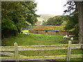 NT8931 : Farm buildings at The Cottage by Phil Catterall