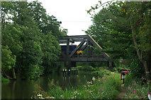 SU9947 : Unusual bridge design by Robin Webster