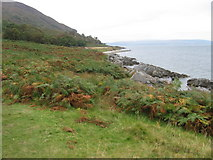 NR9751 : Arran coast path by Chris Wimbush