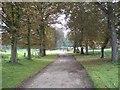 TF9825 : Back drive to Sennowe Hall by Nigel Jones