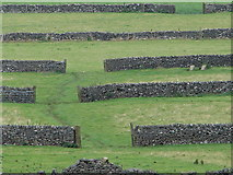 SK1482 : Dry Stone Walls by Ian Paterson