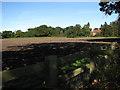 TF9523 : Silverstone Farm by Evelyn Simak