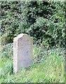 SJ8459 : Milestone, Macclesfield Canal, Cheshire by Roger  Kidd