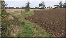 TM0663 : Footpath along field margin by Andrew Hill