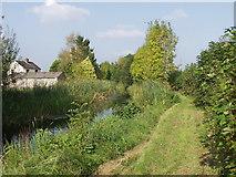 SJ2615 : Montgomery Canal at Arddlin by John Haynes