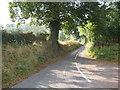 SJ6631 : Lane to Old Colehurst Manor by Peter Fleming