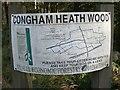 TF7222 : Walkers' map, Congham Heath Wood by Nigel Jones