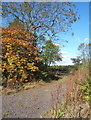 TM2668 : Footpath in autumn by Andrew Hill