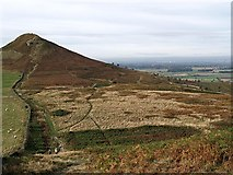NZ5812 : Roseberry Common by Stephen McCulloch