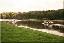 SK7046 : River trent and Shipman's Wood by Richard Croft