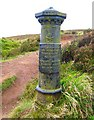 J3279 : Old Boundary Post, McArt's Fort by Rossographer