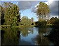 SE8745 : Londesborough Park by Paul Glazzard