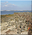 TA0624 : Humber Foreshore with Riprap by David Wright