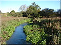 TF8215 : River Nar at Castle Acre 1 by Robert Walden