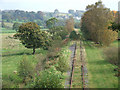 SJ9453 : Disused Railway Line to Leekbrook, Staffordshire by Roger  Kidd