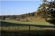 TL8162 : Valley of the River Linnet by Bob Jones