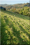 SK2377 : Soil creep in Mag Clough valley by Roger Temple