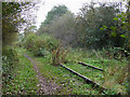 SJ9653 : Disused Railway near Horse Bridge, Staffordshire by Roger  Kidd