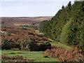 SX6870 : Moorland edge at Venford reservoir by Derek Harper