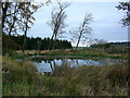 NY5321 : Fishing pond on Lowther Estate by Keith Wright
