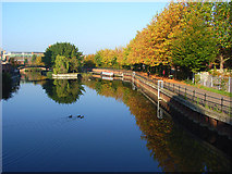 SU7273 : The River Kennet, Reading by Andrew Smith