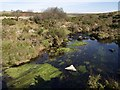 SX6472 : River Swincombe by Derek Harper