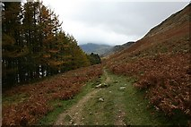 NY4714 : Footpath on North West Side of Haweswater by Steve Partridge