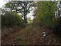 SJ5133 : Farm access track by John Haynes