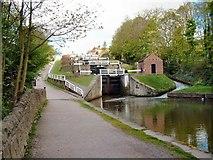 SE1039 : Five Rise Locks Bingley by Roy W Lambert