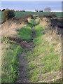 TM2023 : Sea wall footpath heading for Landermere by Zorba the Geek