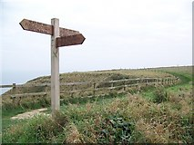 TA1974 : Headland Way near Bempton by Maigheach-gheal