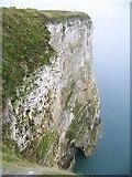 TA1974 : Bempton's Chalk Cliffs by Maigheach-gheal