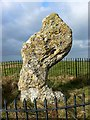SP2930 : The King Stone close up, Warwickshire by Brian Robert Marshall