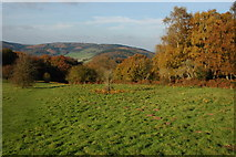SO5212 : Offa's Dyke Path descending from the Kymin by Philip Halling