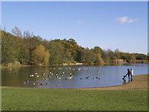 TQ5782 : Whitehall Woods Lake by John Winfield