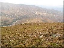 NN6754 : Montane heath, Geal Charn by Richard Webb
