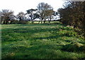 TA2144 : Rolston Fields by Paul Glazzard