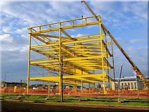 NT2276 : Yellow Steel by Steve  Fareham