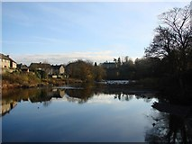 NZ0416 : The River Tees by Bill Henderson